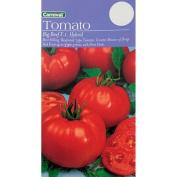 Carnival Seeds Tomato Big Beef F1 Hybrid