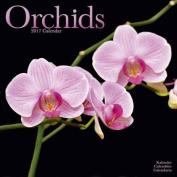 Orchids Calendar 2017