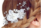 Miya® 1 Mega Glamour Soft Tulle Bridal Comb Hair Comb with Wonderful Flowers Hair Comb Pearl and Crystals Bridal Jewellery Wedding/Confirmation (, Tablet YY01
