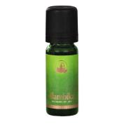 Certified Organic Champaca red, abs. Essential Oil