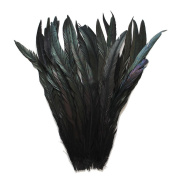 Cynthia's Feathers 25pcs Black 30cm - 36cm Bleach-Dyed Rooster Coque Tail Feathers