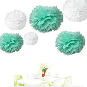 Since ® 12PCS Mixed Size White Mint Green Party Tissue Pom Poms Wedding Birthday Party Girls Room Decoration