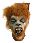 Veil Entertainment Gory Shrunken Head 20cm Prop Red