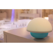 Touch Sensor Dimmable LED Tumbler Night Lights 7 Colours Changing Nightlight Mood Lamp with Silicone Mushroom Lampshade for Newborn Baby Room/Bedroom/Living Room/Home Decoration