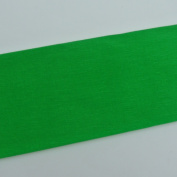 Crepe Paper Green Art Project Tissue Paper Flower Crepe Paper