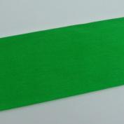 Crepe Paper Green Art Project Tissue Paper Flower Crepe Paper
