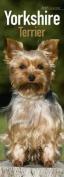 Yorkshire Terrier Slim Calendar 2017