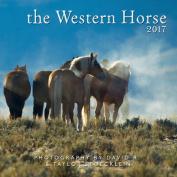 2017 Western Horse Calendar