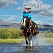 2017 Paint Horse Calendar