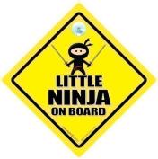 Little Ninja on Board, Ninja on board Car Sign, Baby on Board Sign, baby on board, Novelty Car Signs, Bumper Sticker Style, Ninja Sign, Ninja Car Sign, Car Signs