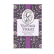 Greenleaf Small Fragrance Sachet Car Air Freshener - Vintage Violet