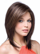 Elegant Women Occidental Style Dark Brown Shoulder-length Straight Layered Daily Hair Wigs