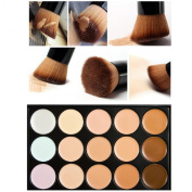 Lookatool Professional 15 Colour Concealer Camouflage Makeup Palette With a Brush