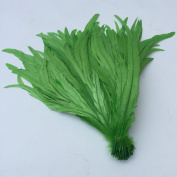 13-16inch 33-40cm Rooster Coque Tail Feather for costume decoration pack of 20