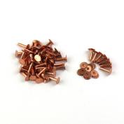 lots 120pcs Copper Rivets & washer gauge 1.3cm 9 Gauge Saddlery Fasteners Nail TO264