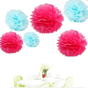 Since ® 12pcs Hot Pink & Sky Blue Tissue Paper Pom Poms Pompoms Paper Flower Balls for Wedding Birthday Party Baby Shower Decoration