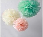 Since ® 12PCS Mixed Ivory Peach Mint Tissue Pom Poms Paper Flower Wedding Bridal Shower Party Fluffy Decoration SIC-01735
