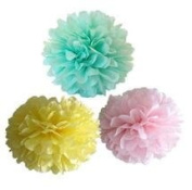 Since ® 12PCS Mixed Pink Yellow Mint Tissue Paper Pom Poms Wedding Party Bridal Shower Party Decoration