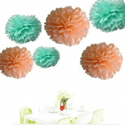 Since ® 12PCS Mixed Sizes Peach Mint Green Party Tissue Pom Poms Wedding Birthday Party Girls Room Decoration