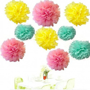 Since ® 18 x Mixed Pink Yellow Mint Tissue Paper Pom Poms Pompoms Flower Balls Wedding Birthday Party Nursery Decoration