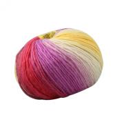 Celine lin One Skein 100% Wool Thick Warm Hand knitting Yarn 100g,Multi-coloured 32