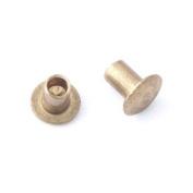 0.2cm Dia. 0.2cm Long Brass Rivet
