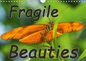 Fragile Beauties - Exotic Butterflies 2017