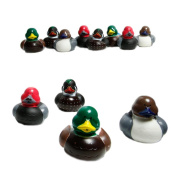 Decoy Rubber Ducks