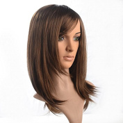Namecute Brown Mixed Black Straight Natural Long Wig Heat Resistant 46cm for Women
