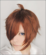 LanTing Love Chunibyo & Other Delusions Togashi Yuuta Brown Cosplay Party Fashion Anime Wig