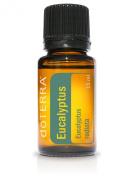 Nature's Alchemy Eucalyptus Oil, 120ml