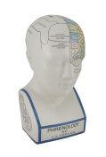 Large Phrenology Head With Coloured Map Ceramic Coin Bank