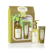 Fruits & Passion Hand Care Duo Coriander & Olive Tree