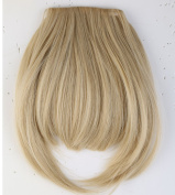 "LAY Long Thick 8""(20cm) False Bang Ash Blonde Mix Bleach Blonde Hairpiece Bangs/fringe Clip in Hair Extensions One Piece Straight Hairpiece Accessories"