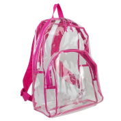 Pink Transparent Backpack