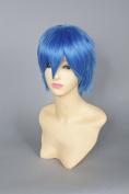 ACYWIGS fashion wigs women wigs girl wigs party wigscosplay wigs anime wigs Vocaloid kaito GH96 31cm 137g