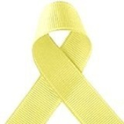 Bertie's Bows Baby Maize Yellow 9mm Grosgrain Ribbon on 25m Roll