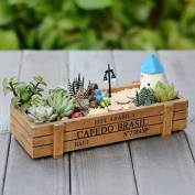 1pcs rectangle box wood flowerpot decorative palm bonsai landscape artificial fleshiness Cactus plant decorative flower vase