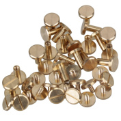 Solid Brass Flat Head Nail Rivets Chicago Screws for DIY Leather Craft Purse Pack of 20