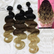 My Nice Hair® 12+14+41cm 3 Bundles 300g Brazilian Remy Three Tone Ombre #1B/4/27 Human Hair Extensions Weave, Very Full and Thick