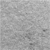 Crystal Clay Sparkle Dust - Mica Powder 'Silver' 1.5g