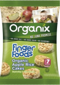 Organix 7 Month Rice Cakes Apple 40g