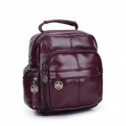 iTECHOR Women Popular Preppy Style PU Leather Backpack Shoulder Bag Travel Bag