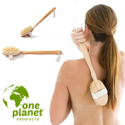Body Brush 100% Natural Dry Brushing Exfoliator (2 Pack) by One Planet, Reduce Cellulite Fast! Made With Soft Bristle, Best Exfoliating Scrub Before Bath or Shower, Detox and Exfoliate Your Skin!