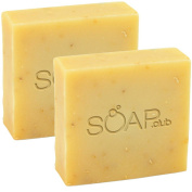 Goat's Milk Citrus Coconut Oil Soap With Organic Shea Butter and Hemp Oil By Soap Club 160ml 2 Pack