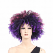 STfantasy 46cm Wonderful Purple Afro Wigs For America Black Men And Women