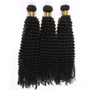 Toprincess 8A Grade Brazilian Virgin Hair Weft Kinky Curly 25cm 30cm and 36cm Natural Black Virgin Hair for Black Woman No Tangle and No Shedding 1 Year Lasting