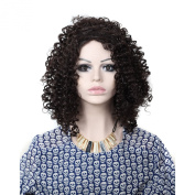 Short Women Wigs Afro-curly Hairstyle Women Wigs Synthetic Wig