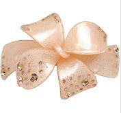Luxious Acrylic Rhinestone hair comb bridal hair accessories Clips for hair bride hair accessories Jewellery, Champange