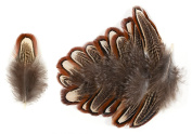 Ring-necked Pheasant Upper Back Feathers (20 Pieces), Bronze, Cream and Black Mottled